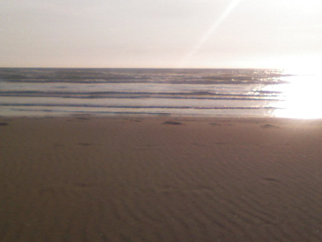 Photo of summer ocean