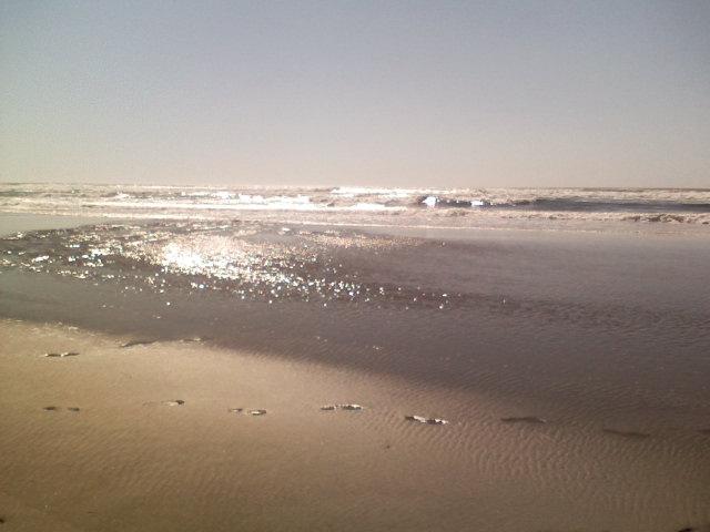 sparkly ocean photo